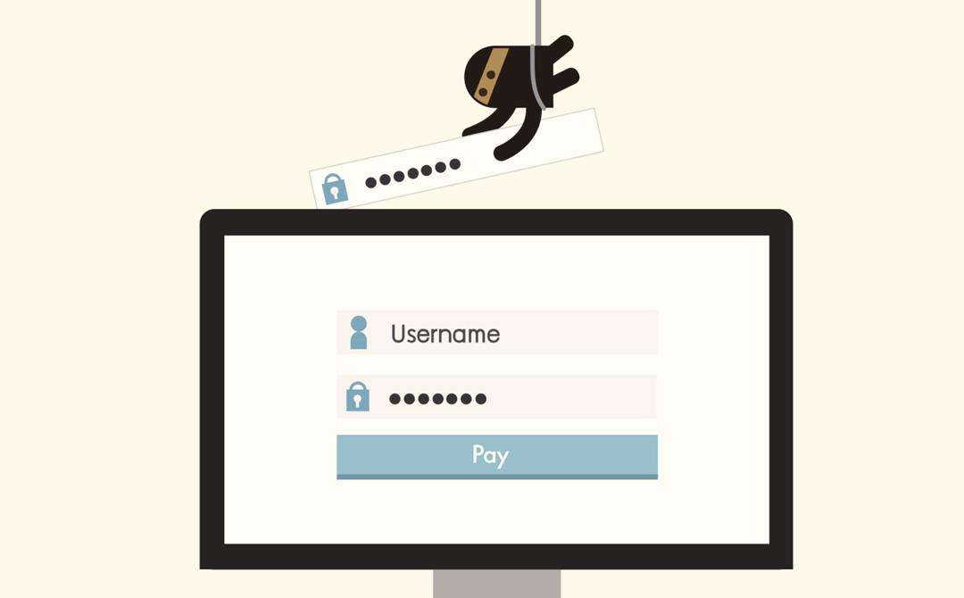 Мошенничество при осуществлении онлайн-транзакций